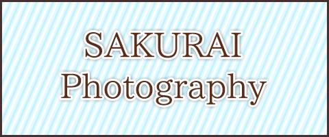 SAKURAI photography